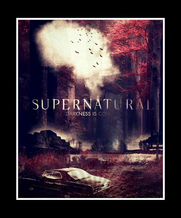 http://www.thewinchesterfamilybusiness.com/images/DiscussionPage/Season11/Posters/mrhqO83.jpg