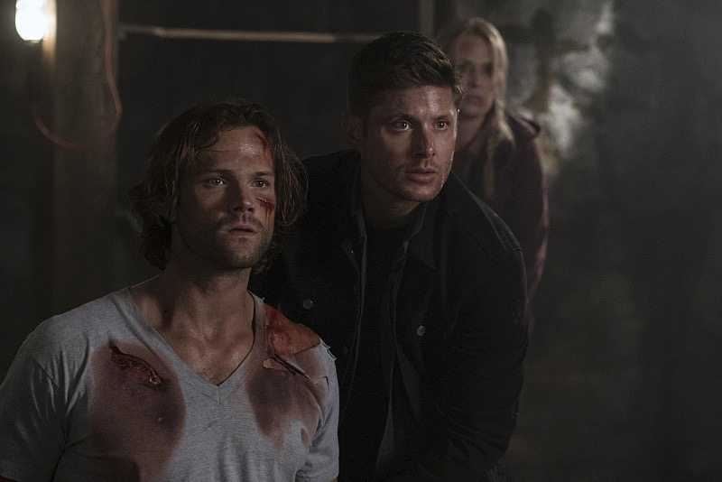 Let's Speculate: Supernatural 12.02