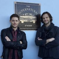 Supernatural Episode 300: News, Celebrations & Congratulations!