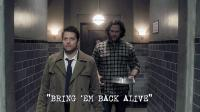 "Fan Video of the Week: Supernatural Reflections 13.18 ""Bring 'em Back Alive"""