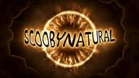"""Fan Video of the Week: Supernatural Reflections 13.16 """"Scoobynatural"""""""