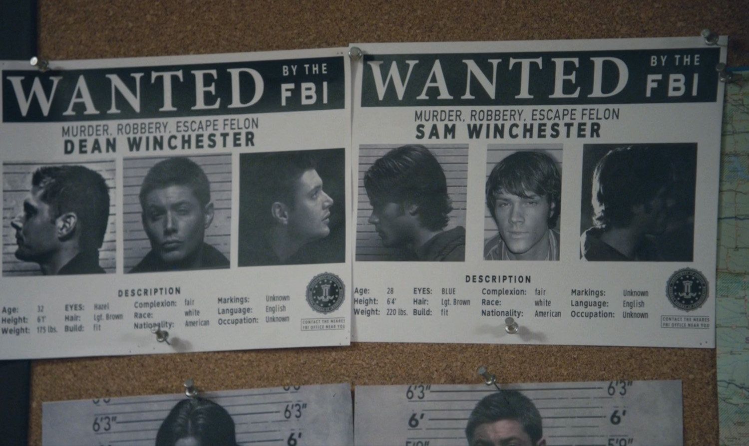 The Winchester Family Business - Fan Video of the Week