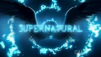 The WFB Supernatural Season 14 Editor's Choice Awards